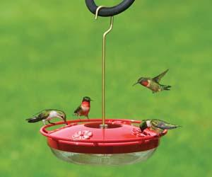 WBU Hummingbird Feeder